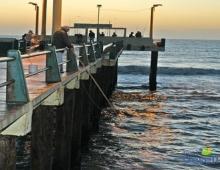 Muelle de Gesell