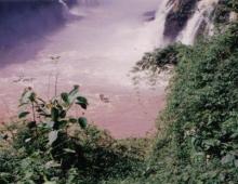 Vista de la parte baja del rio
